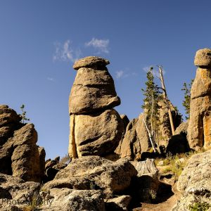 Black Hills Needles Hwy